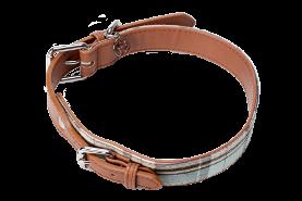 Dog Collar - Clover